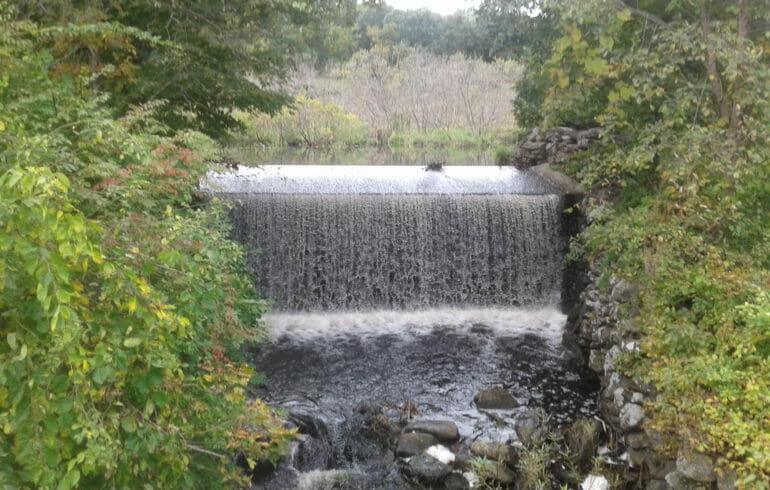 Williams Waterfall