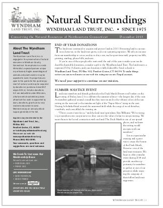 WLTDec2013 Newsletter