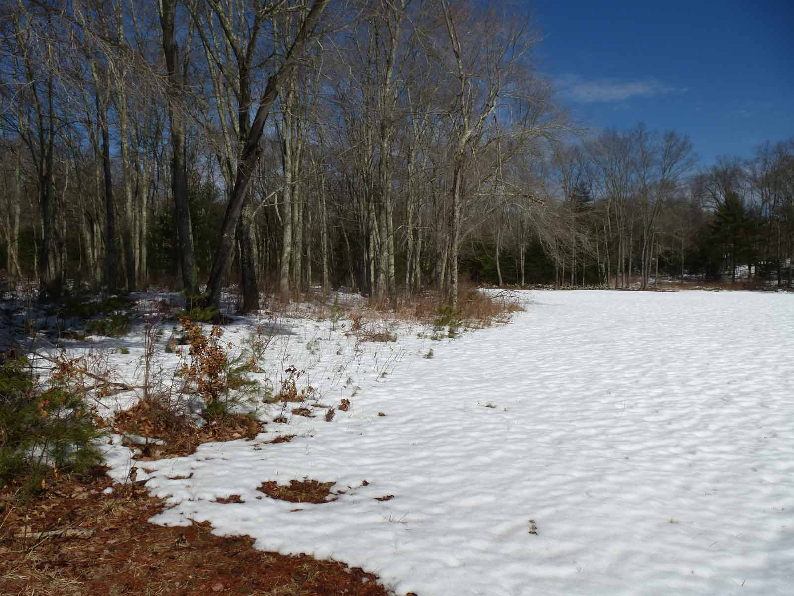 Rainville meadow with snow
